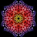 Humandala 2 by David Kleinsasser