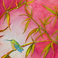 Hummingbird by Laura Shepardson