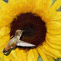 Hummingbird On Sunflower by Diana Haronis