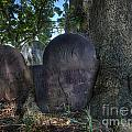 Husband And Wife Together Forever - Belleville Dutch Reformed Church - Husband And Wife Grave by Lee Dos Santos