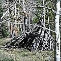 Hut by Treena Bridges