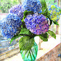 Hydrangeas In The Sun by Debbie Portwood