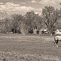 Hygiene Colorado Boulder County Scenic View Sepia by James BO  Insogna