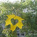 I Love Autumn 02 by Ausra Huntington nee Paulauskaite