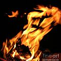 I See Fire by Anthony Wilkening