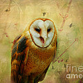 I Will Make You Smile Owl by Peggy Franz
