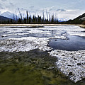 Ice And Water Vermilion Lakes by Diane Dugas