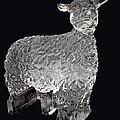 Ice Cold Lamb Carved In Ice by LeeAnn McLaneGoetz McLaneGoetzStudioLLCcom