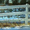 Ice Fence by Anne Ferguson