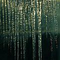 Ice Winter Denmark by Colette V Hera  Guggenheim
