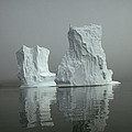 Iceberg by David Vaughan