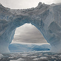 Iceberg With A Natural Arch, Antarctic by Flip  Nicklin