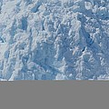 Icebergs Calving From Chenaga Glacier by Rich Reid