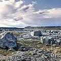 Iceland Barren Landscape - 02 by Gregory Dyer