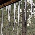 Icicle by Nicole Fleckenstein