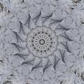 Icy Mandala 1 by Rhonda Barrett
