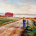 Ile D'orleans Road To The Red Gabled House Quebec Maritime Landscape by Carole Spandau