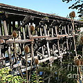 Illinois Central Wooden Train Bridge by Roger Look