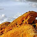 Imagination Runs Wild - Valley Of Fire Nevada by Christine Till