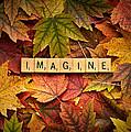 Imagine-autumn by  Onyonet  Photo Studios