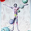Immune System Components by Hans-ulrich Osterwalder