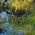 Impressions Of Spring by Lynn Bauer
