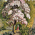 In A Shoreham Garden by Samuel Palmer