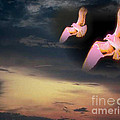 In Flight by Belinda Threeths