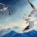 In Flight by Julie Brugh Riffey