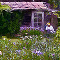 In The Iris Garden by Susan Isakson