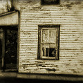 In The Window by Peter Labrosse