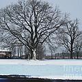 Indiana Winter by Jerry Hellinga
