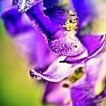 Indigo Flower by Sarah Wiggins