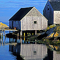 Inlet At Peggys Cove Nova Scotia by Dave Mills
