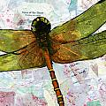 Insect Art - Voice Of The Heart by Miriam  Schulman