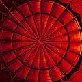 Inside A Hot Air Balloon by Anthony Doudt