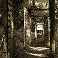 Into The Butterfly Garden Sepia by DigiArt Diaries by Vicky B Fuller