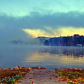 Into The Fog by Susan Leggett