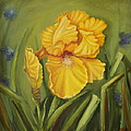 Iris by Marlyn Boyd