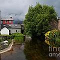 Irish Houses by Louise Fahy