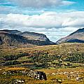 Irish Landscape 100 by Douglas Barnett