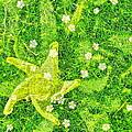 Irish Moss With A Twist by Randy Rosenberger