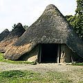 Iron Age Roundhouse by Sheila Terry