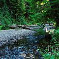 Iron Creek  by Jeff Swan