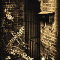 Iron Door Sepia by Kelly Hazel