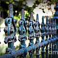 Iron Fence by Perry Webster