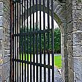 Iron Gate by Charlie and Norma Brock
