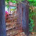 Iron Gate by Usha Shantharam