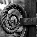 Iron Swirls by David Lee Thompson