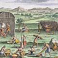 Iroquois Village, 1664 by Granger